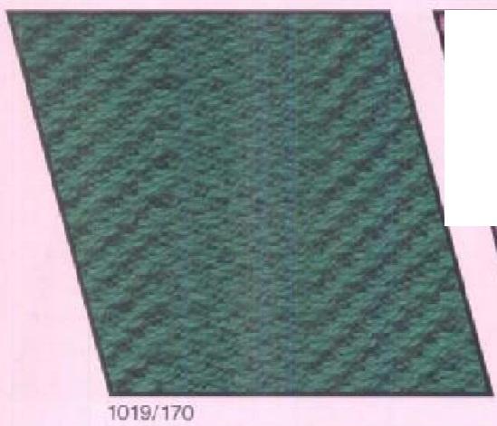 1019-170